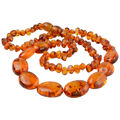Baltic Honey Polished Mixed Amber Adult Necklace
