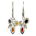 "Sterling Silver and Baltic Multicolored Amber Earrings ""Martina"""